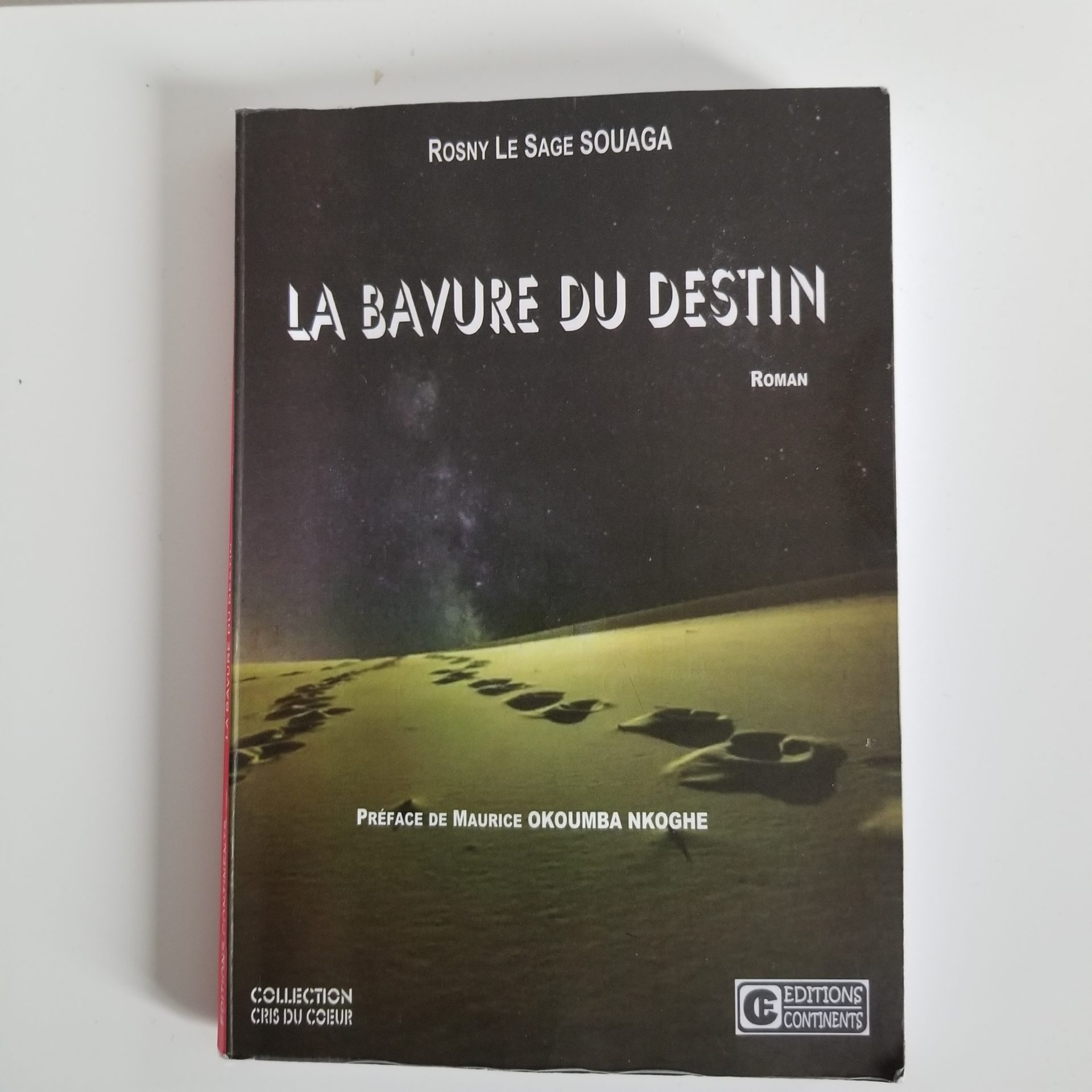 La Bavure du destin, chronique d'un roman velléitaire